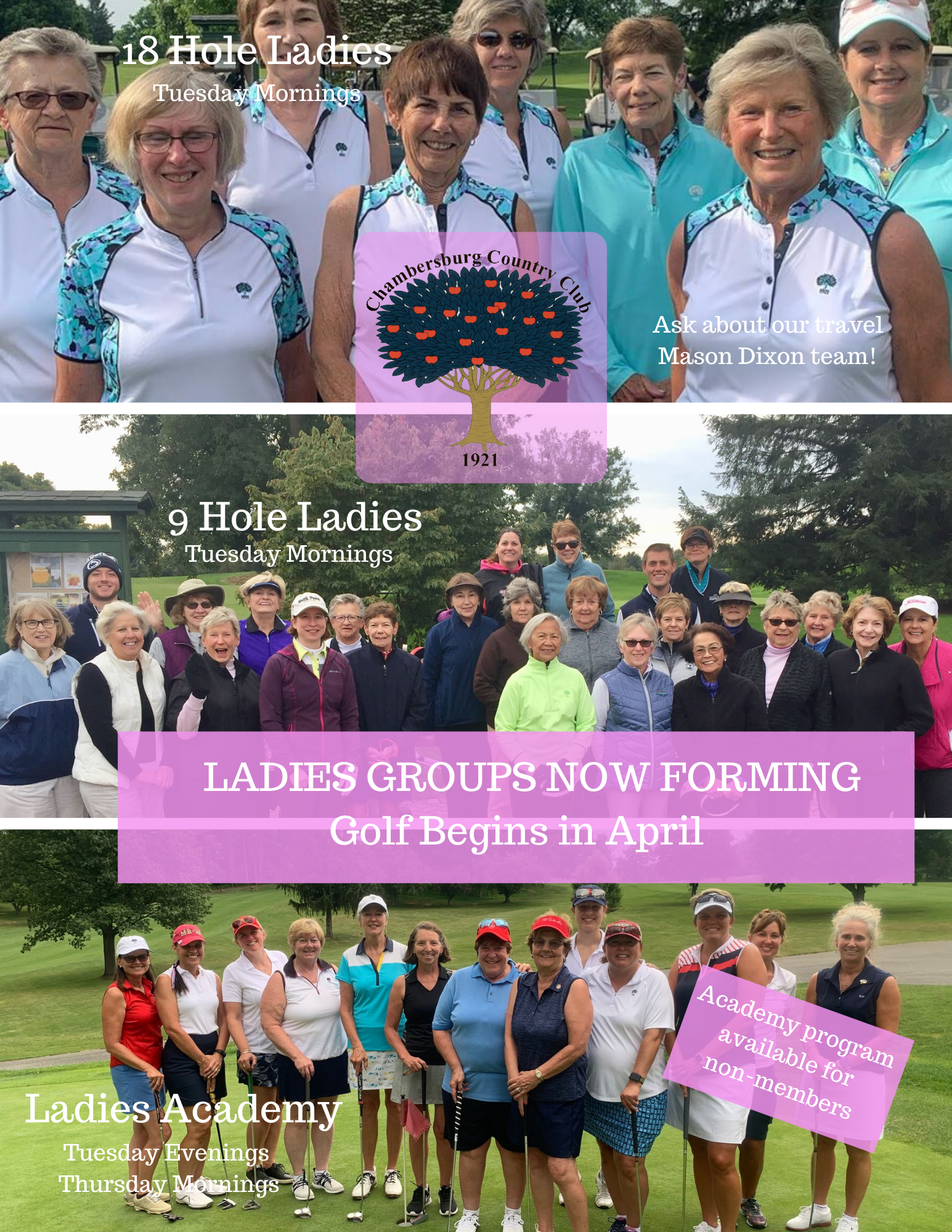 Ladies Golf 2020